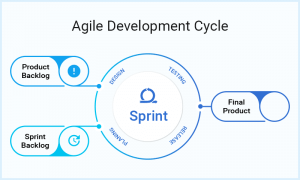 Agile Scrum Based Development