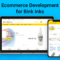 CSL- Ecommerce Development for Bink Inks